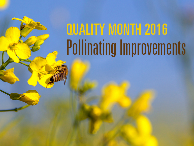 Quality_month_1