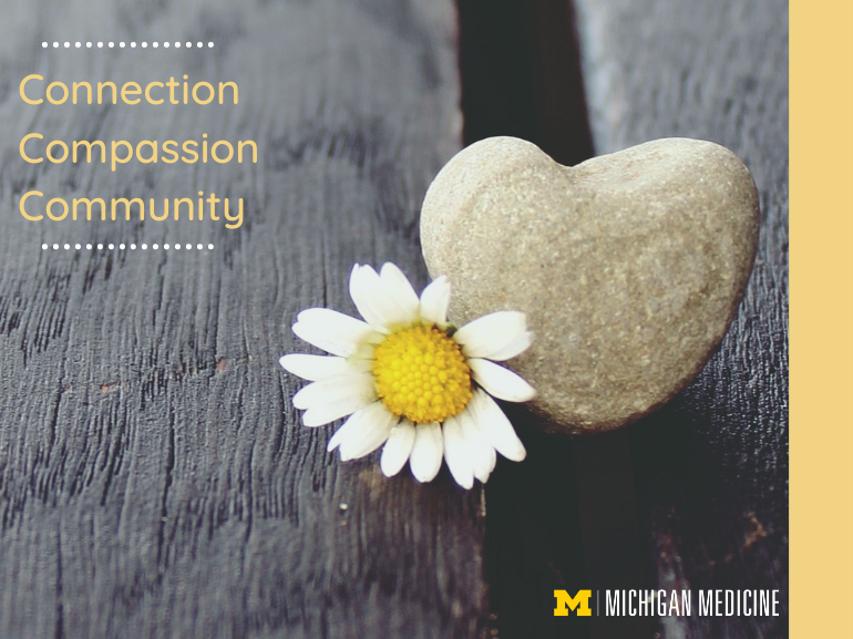 Connection, compassion, community. Written with a flower and rock shaped like a heart in the background.