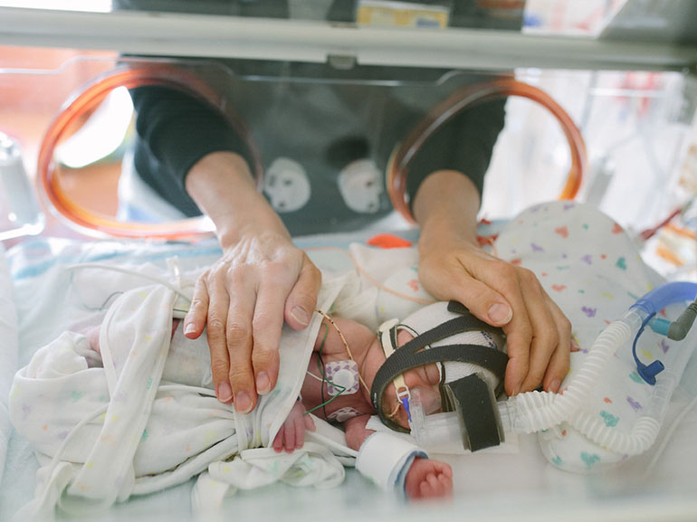 Two hands cup a baby lying in a NICU bed.